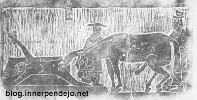 violación por caballo