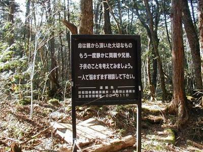 Aokigahara o el mar de arboles