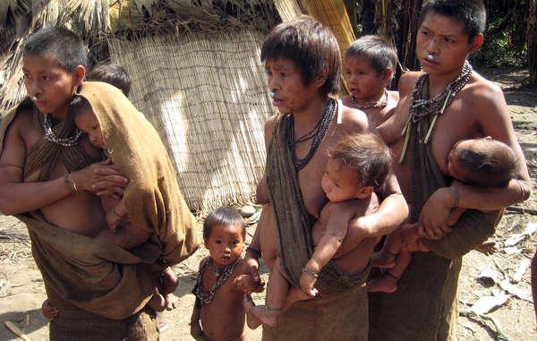 Los indígenas aislados nanti viven en lo profundo de la Reserva Kugapakori-Nahua, y se encuentran amenazados por la invasión de sus tierras y las enfermedades.